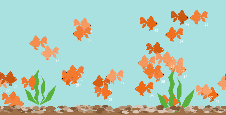 Goldfish breeding-Artificial selection preview image