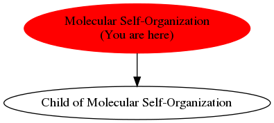 Graph of models related to 'Molecular Self-Organization'