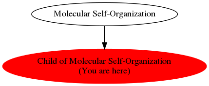 Graph of models related to 'Child of Molecular Self-Organization'